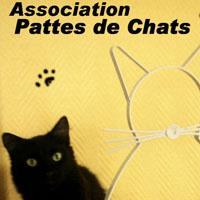 Association - Association Pattes de Chats