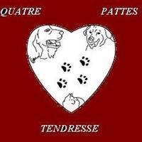 Association - ASSOCIATION QUATRE PATTES TENDRESSE