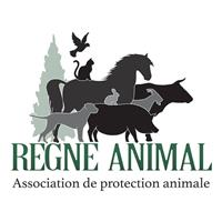 Association Association Règne animal