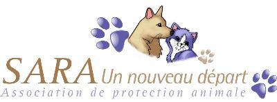 Association - ASSOCIATION SARA, UN NOUVEAU DEPART