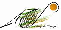 Association ASSOCIATION TENNIS DE SAVIGNE L'EVEQUE