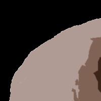 Association - Association Vauclusienne de Défense des Furets (A.V.D.F.)