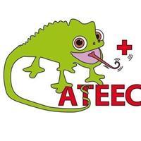 Association - ATEEC (Association Tourangelle des Etudiants en Ergothérapie de la Croix-rouge)