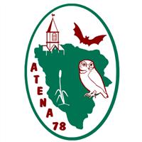 Association - Atena78