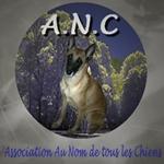 Association - AU NOM DE TOUS LES CHIENS (ANC)