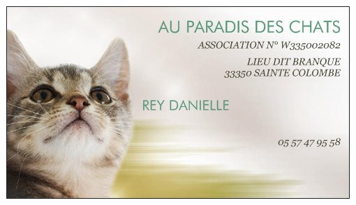 Association - Au paradis des chats