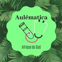 Association - AULEMATICA