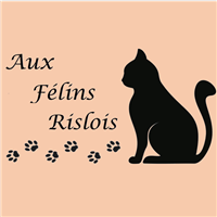 Association - Aux Félins Rislois