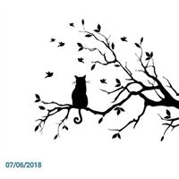 Association - aux chats perches