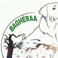 Association - Bagheraa