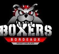 Association - BGHG (Boxers de Bordeaux amateurs)