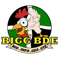 Association BIGG BDE
