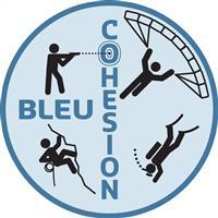 Association - BLEU COHESION