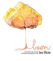 Association BOOM LES LILLOIS