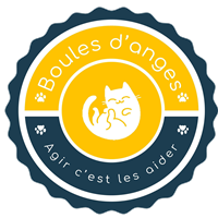 Association - Boules d'anges