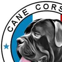 Association - Cane Corso 2.0