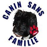 Association - CANIN SANS FAMILLE