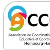 Association - CENTRE SOCIAL ACCES