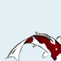 Association - Cercle d'Aïkido des Marronniers