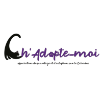 Association - Ch'Adopte-moi