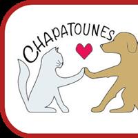 Association - Chapatounes