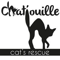 Association - Chat'ouille cat's rescue