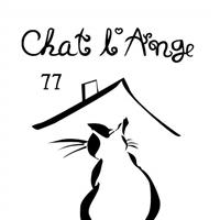 Association - Chat l'Ange 77