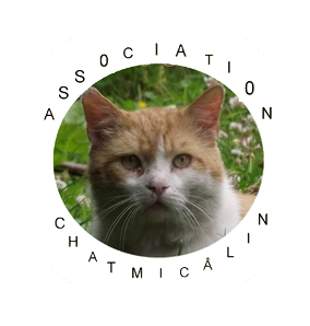 Association - Chatmicâlin