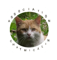 Association Chatmicâlin