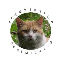 Association - Chatmicâlin