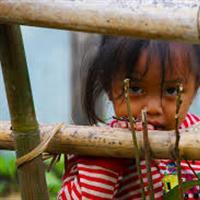 Association - Chemins de bambou