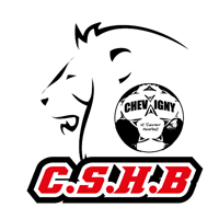 Association - Chevigny Saint Sauveur Handball