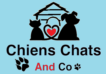 Association - chiens chats and co
