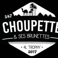 Association - Choupette et ses brunettes