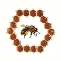 Association - CIVAM apicole des boucles de la Seine