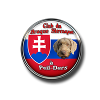 Association - Club du Braque Slovaque à Poil-durs