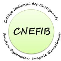 Association - CNEFIB