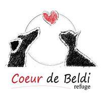 Association - Coeur de beldi