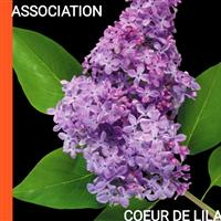 Association - COEUR DE LILAS