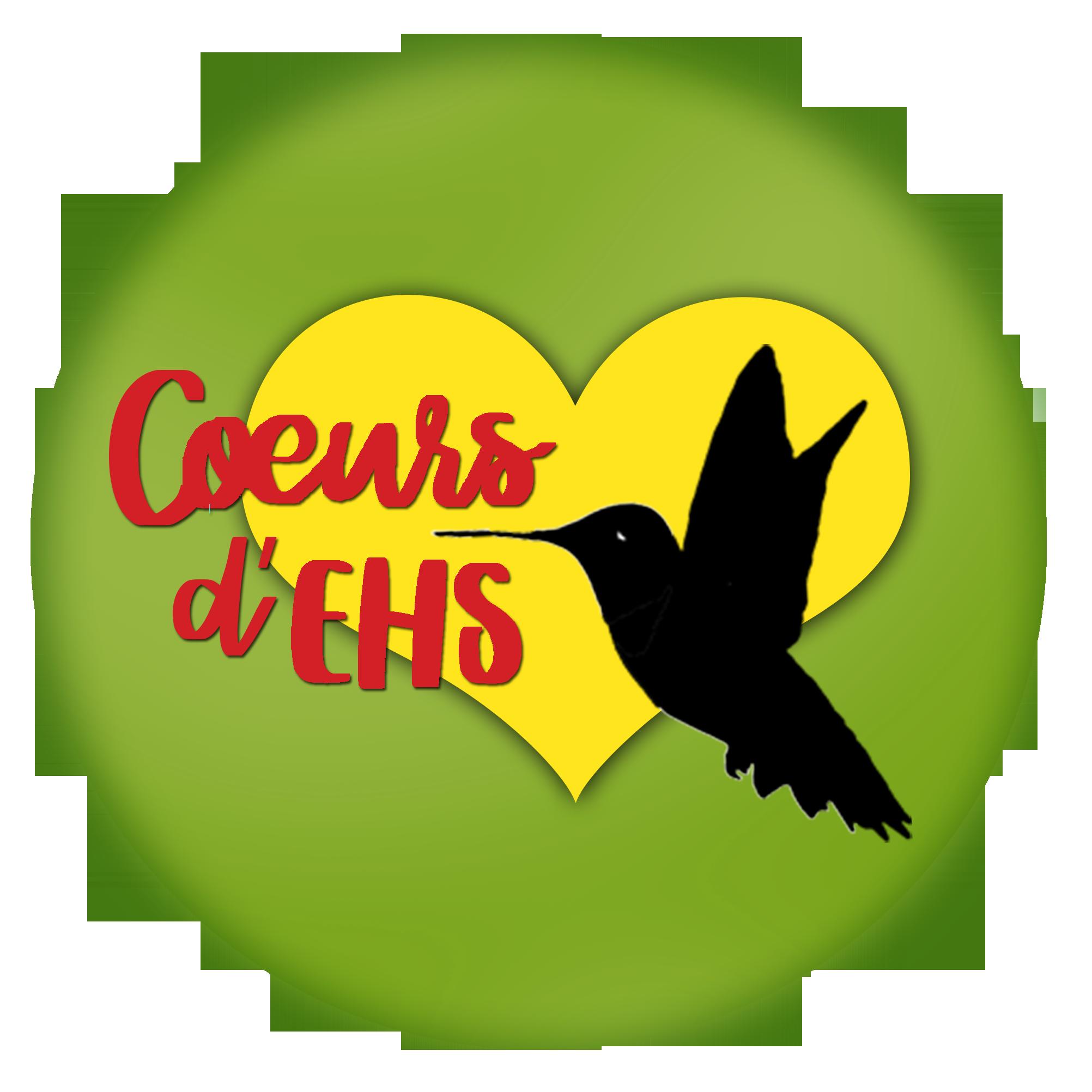 Coeurs d'EHS | HelloAsso