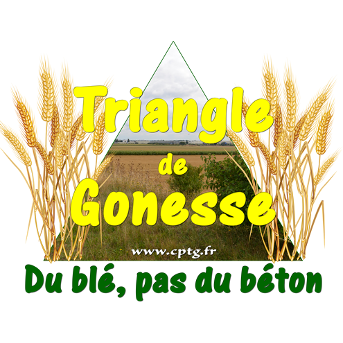 collectif-pour-le-triangle-de-gonesse.png