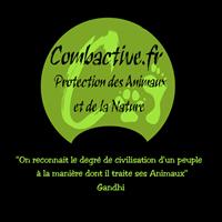 Association - Combactive