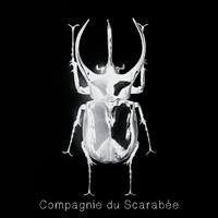 Association - Compagnie du Scarabée