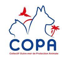 Association - COPA