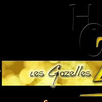 Association - Cours de DANSES ORIENTALES Houdemont