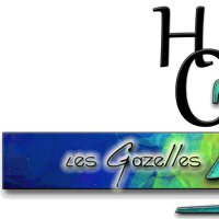 Association - Cours de ZUMBA Houdemont - HOZ