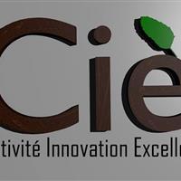 Association - Creativity Innovation Excellence