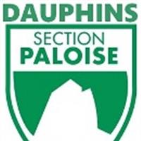 Association - DAUPHINS SECTION PALOISE