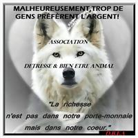 Association Detresse et Bien Etre Animal
