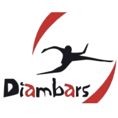 Association - Diambars Aquitaine